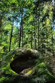 """Der """"Hohle Stein"""" bei Witzelsberg"""