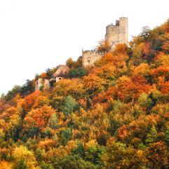 Burg- und Schloßruine auf der Hohen Wacht