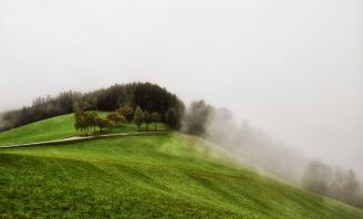 """Nebelgrenze"" bei Hosendorf"