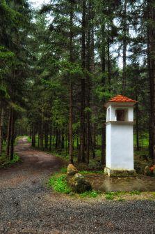 """Seit Jahrhunderten am Platz: das """"Rehgartelkreuz"""""""