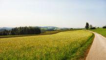 Auf dem Weg nach Kaltenberg