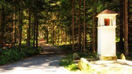 Schnittpunkt vieler Wege: Rehgartelkreuz