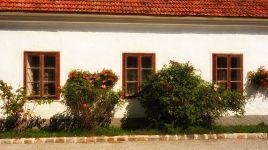Vorbei an alten Höfen in Thann