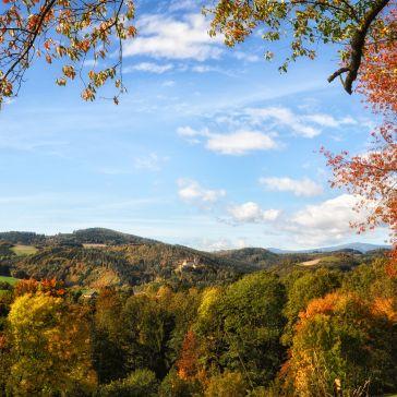 Blick zum Schloss Krumbach