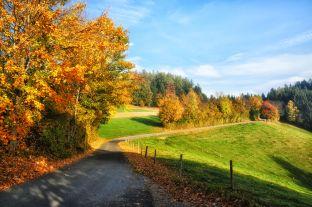 Am Weg nach Ulrichsdorf
