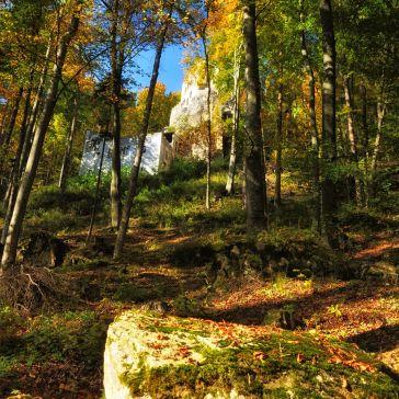 Am Weg zur Burg Grimmenstein