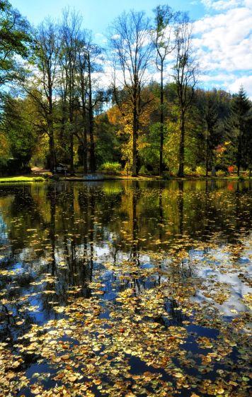 Der Herbst im Spiegel des Teiches