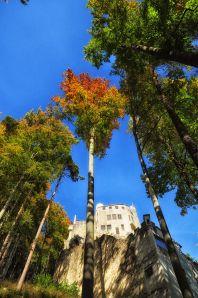 Blick zur Burg Grimmenstein