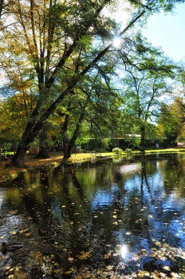 Alte Bäume säumen das Ufer