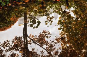 Herbst und Burg spiegeln sich im Wasser