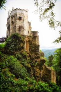 Burg Grimmenstein in voller Pracht