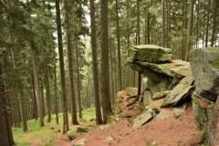 Der Wechselgneis bildet Skulpturen im Wald