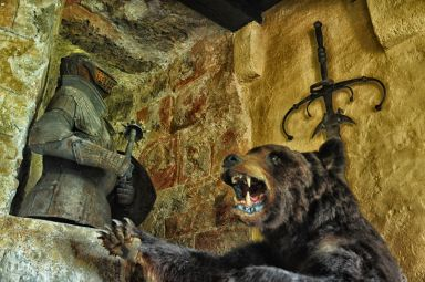 Der Bär bewacht den Rittersaal